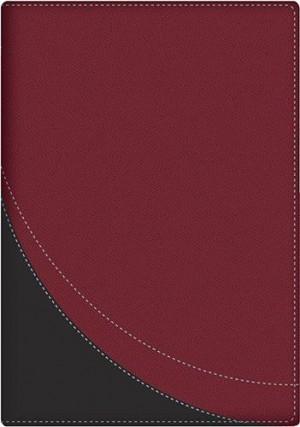 Biblia en orden cronológico. 2 tonos. Rojo/gris - RVR60