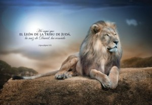 Cuadro canvás Apocalipsis 5:5