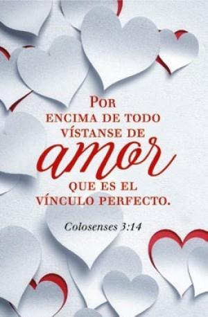 Placa/cuadro cerámica Colosenses 3:14