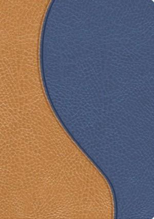 Biblia de promesas. Compacta. 2 tonos. Azul/beige - RVR60