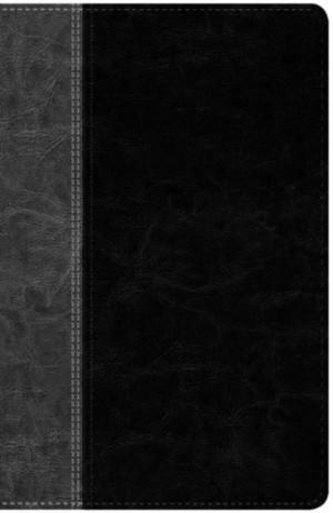 Biblia edición clásica. 2 tonos. Negro/gris - NTV