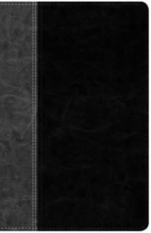 Biblia. 2 tonos. Negro/gris. Índice - NTV
