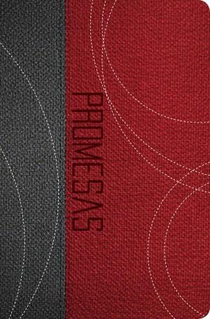 Biblia de promesas. Edición juvenil. 2 tonos. Gris/rojizo - RVR60