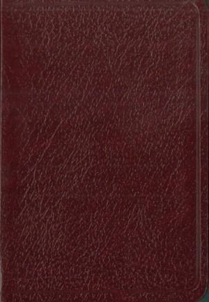 Biblia bolsillo. Imitación piel. Rojizo - NVI