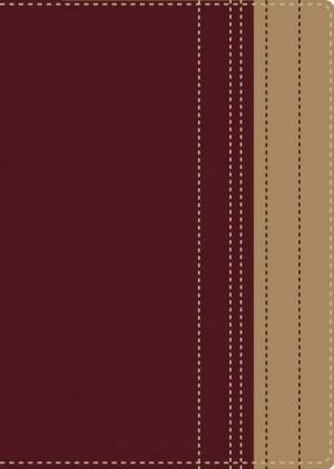 Biblia lectura fácil. Letra grande. Rojo/marrón - RVR77