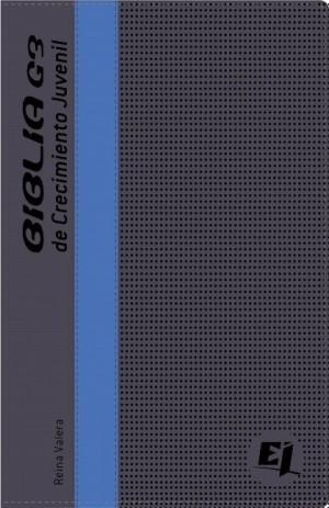 Biblia juvenil G3. 2 tonos. Gris/azul - RVR77