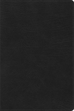 Biblia de estudio arco iris. Imitación piel. Negro. Índice - RVR60