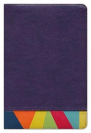 Biblia de estudio arco iris. 2 tonos. Morado/multicolor - RVR60