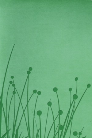 RVR 1960 Biblia Tamaño Personal, pradera verde símil piel
