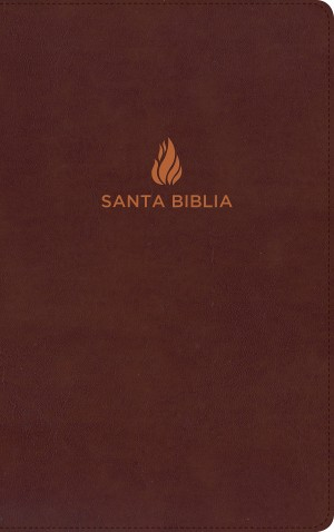 Biblia ultrafina. Piel especial. Rojizo - RVR60