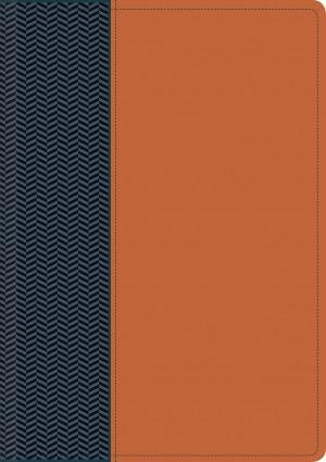 Biblia del diario vivir. 2 tonos. Azul/marrón - NTV