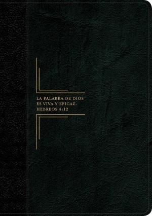 Biblia del diario vivir. Letra grande. 2 tonos. Negro - RVR60