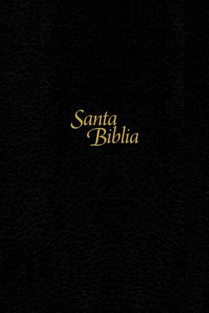 Biblia manual. Letra grande. Tapa dura. Negro. Índice - NTV