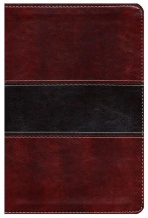 Biblia del pescador. Letra grande. 2 tonos. Marrón - RVR60