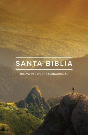 Biblia edición ministerial. Rústica - NVI