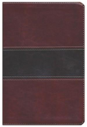 Biblia del pescador. Letra grande. 2 tonos. Marrón - NVI