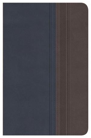 Biblia clásica. Edición especial. 2 tonos. Gris/azulado - RVR77