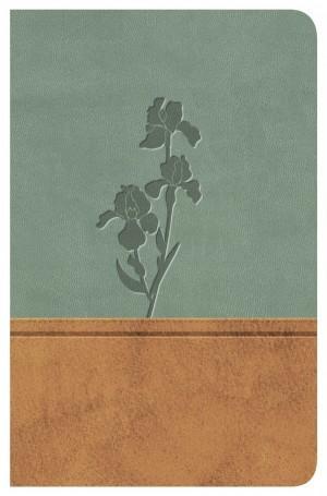 Biblia clásica. Edición especial. 2 tonos. Pardo/menta - RVR77