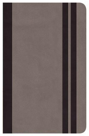 Biblia clásica. Edición especial. Imitación piel. Cenizo - RVR77