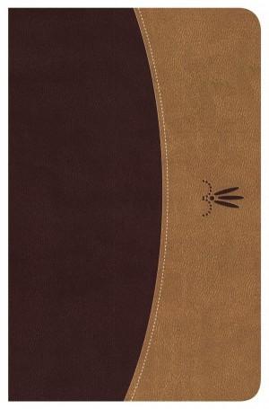 Biblia clásica. Edición especial. 2 tonos. Caoba/pardo - RVR77