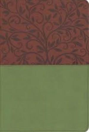 Biblia con imágenes de Tierra Santa. Letra grande. 2 tonos. Marrón/verde - RVR60