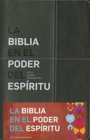 Biblia en el Poder del Espíritu Santo. 2 tonos. Negro/gris - NVI